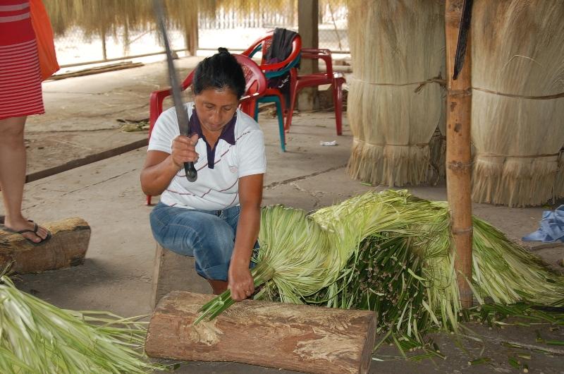 Felix Tomala explica o procedimento de como é feito a palha do Chapéu Panamá    Crédito  Ana Elisa Teixeira. Cortando a palha para depois desfiar    Crédito  ... 8cc04f3740a