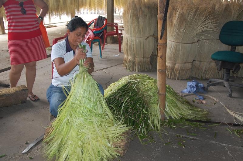 Saiba como é feita a palha do Chapéu Panamá no Equador  f08429f2b9b
