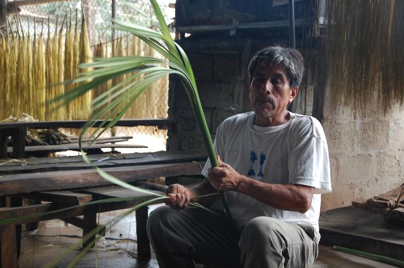 Felix Tomala explica o procedimento de como é feito a palha do Chapéu Panamá    Crédito e672c0dd651